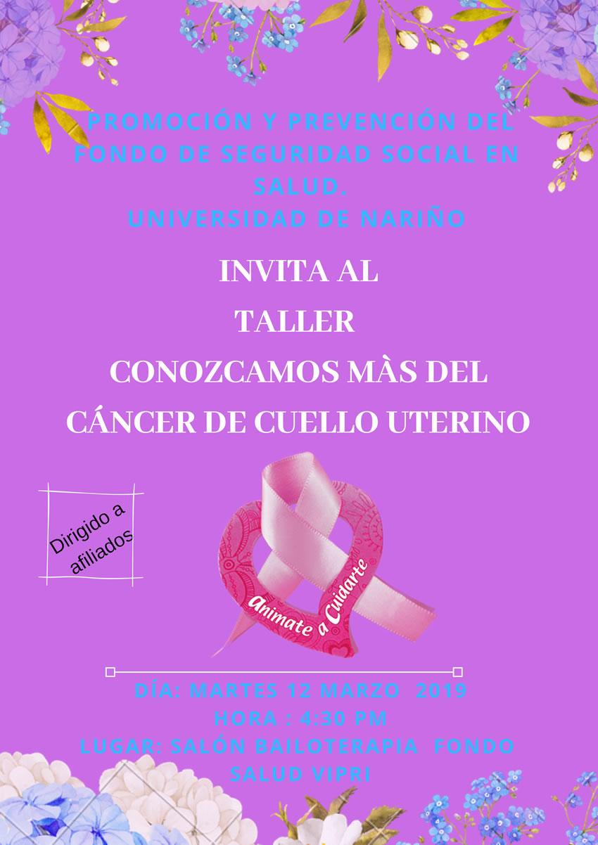 TALLAER CANCER DE CERVIX marzo 2019