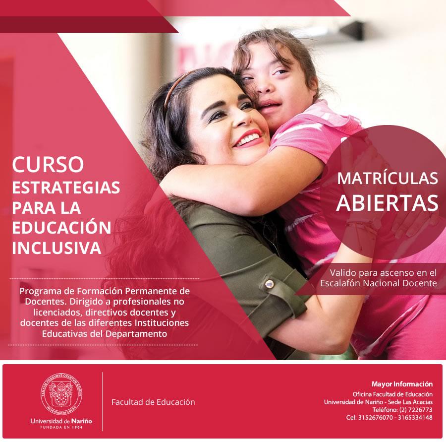 afiche-curso-inclusion