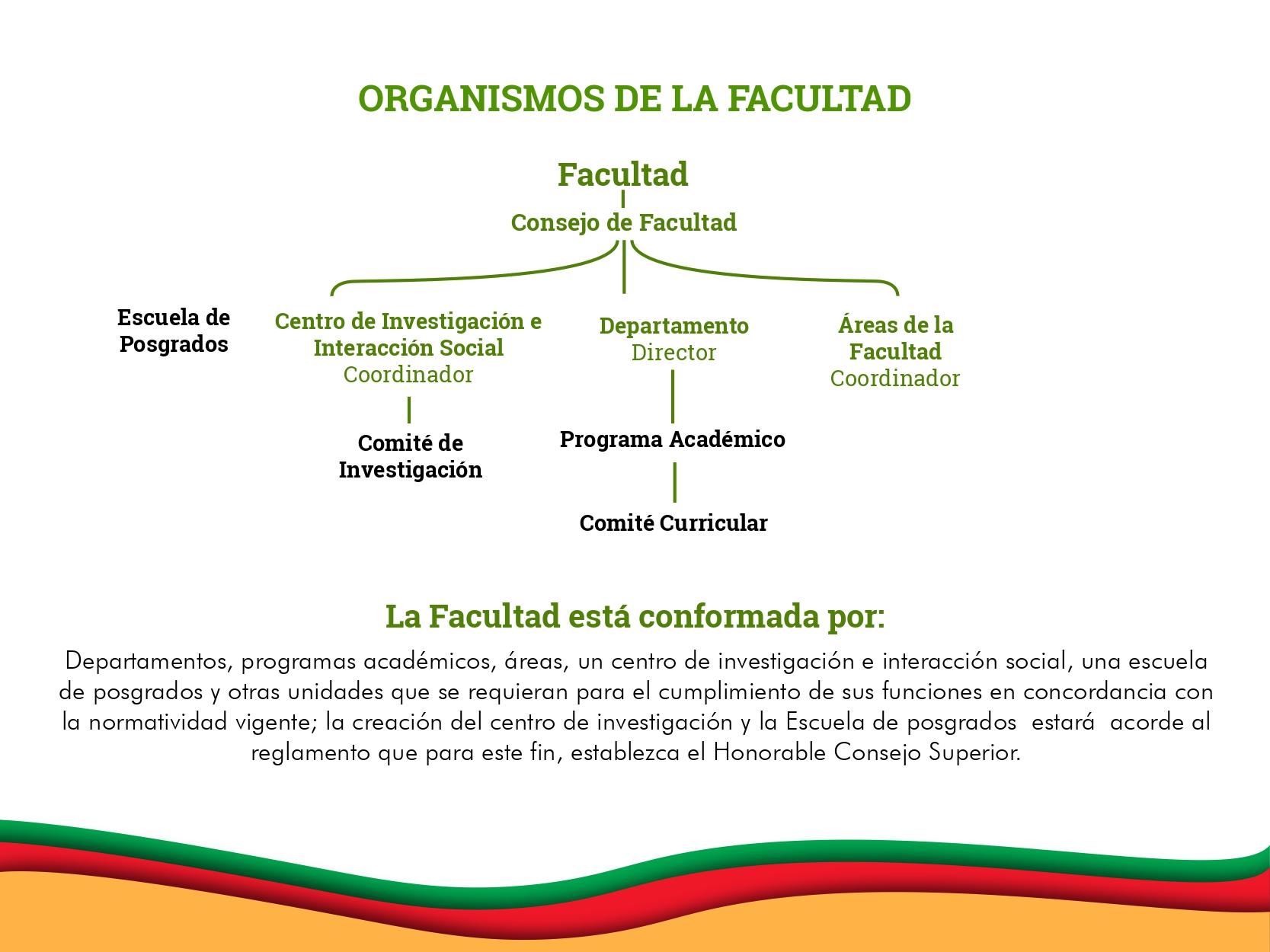 presentacion_0006