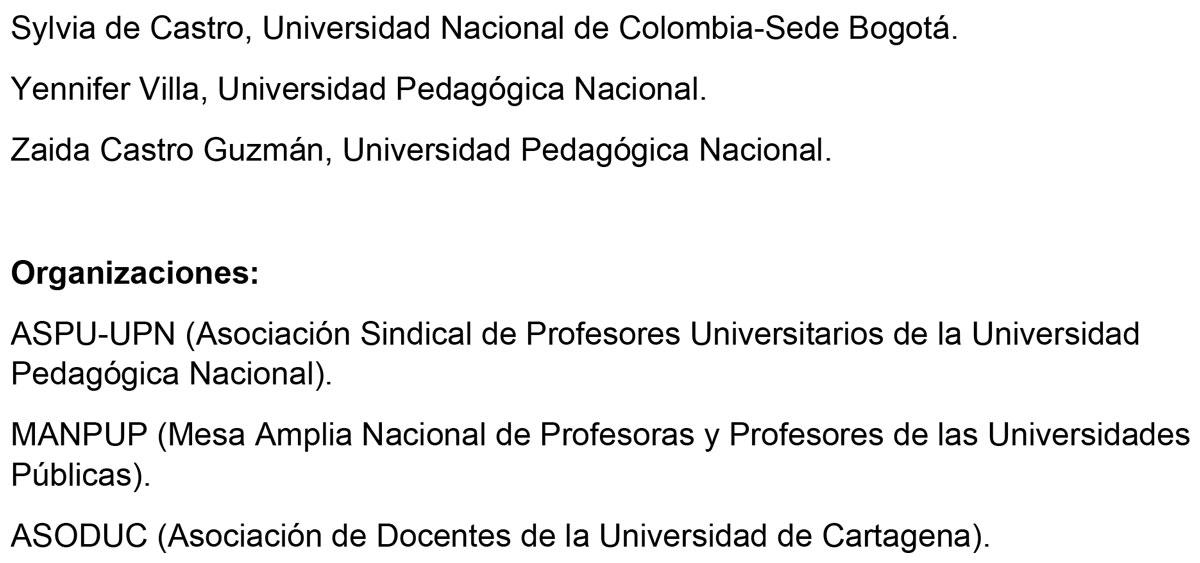 4-Declaracion-Profes-Universidades-Universidad-de-Narino-4