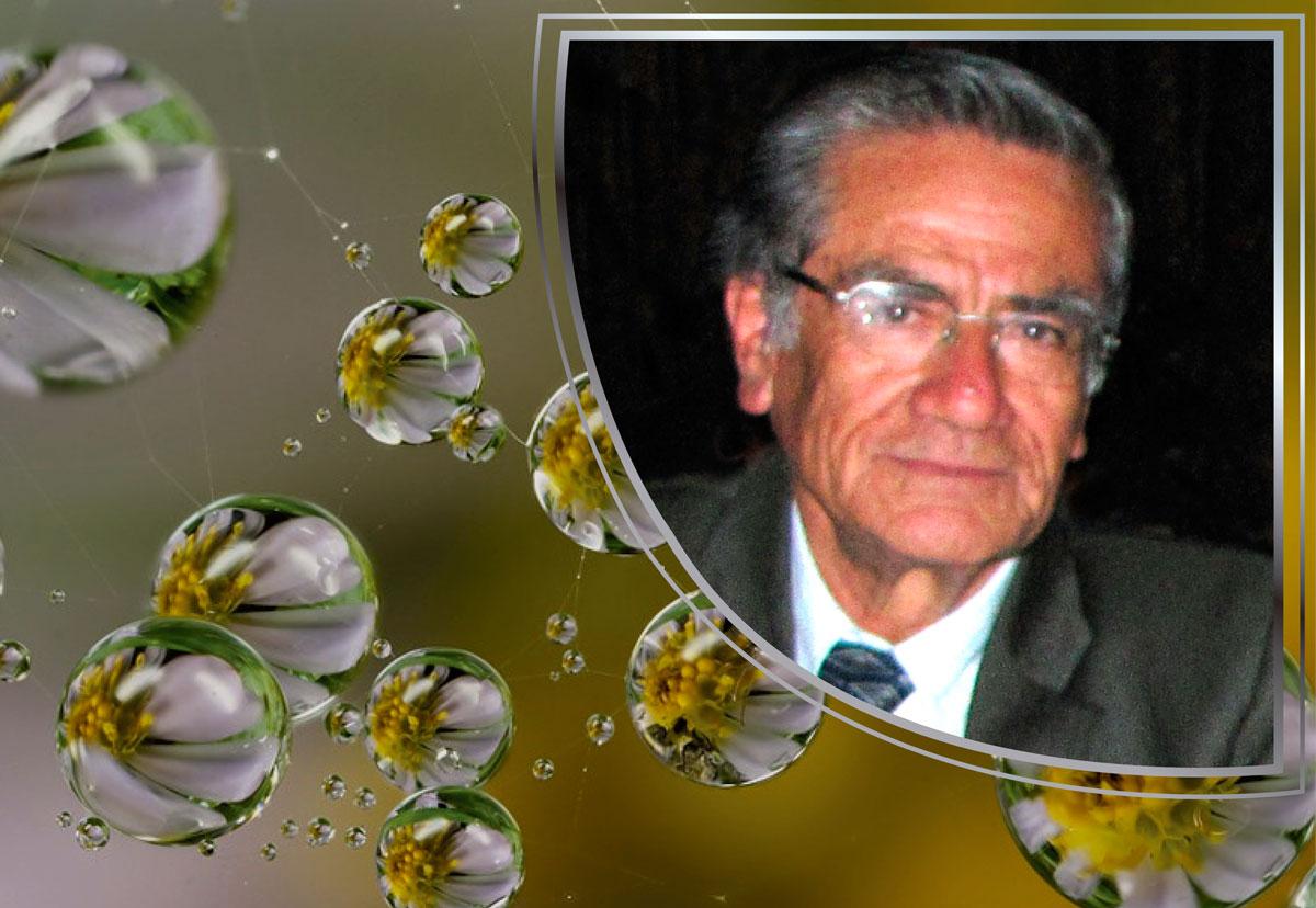 """Profesor Luis Gerardo Galeano Lozano q.e.p.d. """"Maestro de maestros"""" descansa en paz, con la gran satisfacción del deber cumplido"""