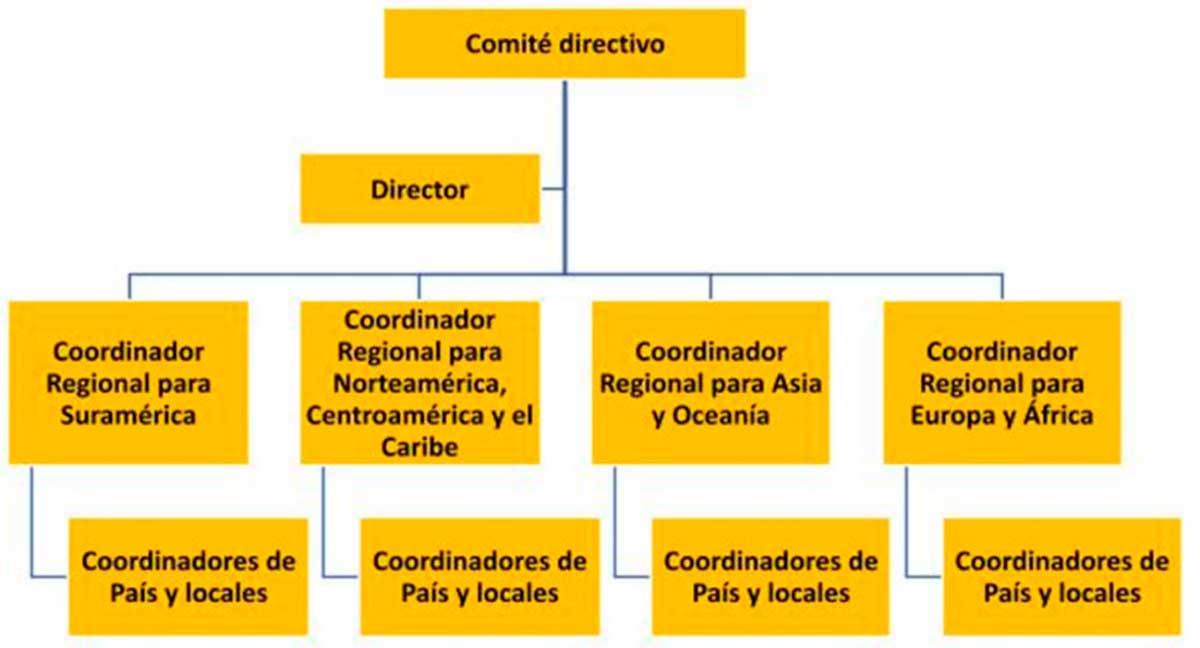 Gráfico 3. Organigrama de la RedINET